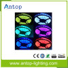 High Output Lumen & Color Changeable RGB LED Strip