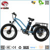 Popular Quad Bike 3wheel Electric Beach Scooter with LCD Display