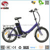 20 Inch 250W Mini Cheap Electric Folding City Bike Ce En15194 Approved Foldable Bicycle Pedal E-Bike