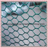 Hexagonal Welded Wire Mesh with Competitive Price