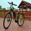 700cc Giant 36V 250W Middle Motor Mountain Electric Bicycle