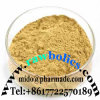 Pharmaceutical Dendrobine Raw Powder Use for Medicine