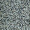 Polished Grey/Black G623 Granite Tiles/Slabs for Square Flooring