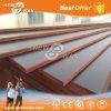 Dynea Film Poplar Core Concrete Film Faced Plywood 1220*2440mm