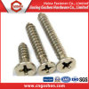 High Quality Stainless Steel Cross Chipboard Self Tapping Screw