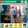 Tung Seeds, Vernicia Montana, Jatropha, Plam Kernel Oil Extraction Machine
