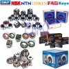 SKF Auto Wheel Hub Bearing Dac30600337D, NSK Automotive Wheel Bearing (DAC70100028)