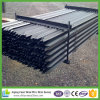 Black Pinted Steel Star Picket