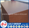 Brown Film Shuttering Plywood
