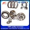 6000 Series 6001 6002 6003 6004 6005 6006 6008 6009 6010 Deep Groove Ball Bearing /Textile Machinery/Tractor Bearings