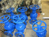 Cast/Carbon Steel DIN Gate Valve F5 Type