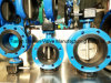 Double Flanged Worm Gear Butterfly Valve