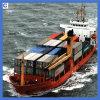 20gp/40gp Shipping From Foshan. Guangzhou to San Jose /Willemstad