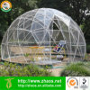 Multifunctional Tool Free Assemble Plastic Structure Greenhouse Garden Dome