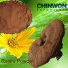 74. Shell Broken Reishi Mushroom Ganoderma Spore Powder