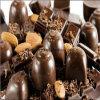 Chinese Popular Fully Automatic Chocolate Depositing Machine