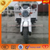 250cc Displacement 3 Wheel Motor Trike