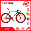 Hot Selling Steel Complete Cheap Steel Factory Road Bike Complete Carbon Road Bike Tt Bike with Groupset for Sale with Ce