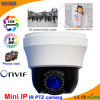 Indoor 2.0 Megapxiel Mini IP PTZ Camera