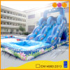 Ocean Fish Inflatable Water Slide (aq1078)