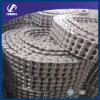Roller Chain with Triplex (SS05B-3)