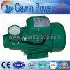 High Quality Qb Series 1HP Pedro Water Pump