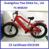 Hi Power Mountain Electric Fat Bike Dirt Bike 1000W