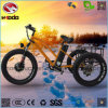 Aluminum Alloy Cargo Electric Fat Tire Tricycle with Lithium Battery