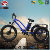 Alloy Frame Front Motor 3 Wheel Fat Electric Tricycle