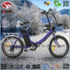 250W Cheap Electric Bicycle for Sale