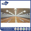Made in China Prefabricated Steel Automatic Poultry Farm