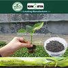 Kingeta Pyroligneous Acid Carbon Based Compound Microbial Fertilizer