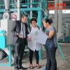 European Roller Milling Wheat Flour Mill Machine ((50tpd)