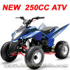 New 250CC ATV, Quad (MC-383)