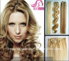 Human Hair, Human Hair Extension