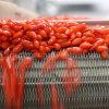 Medlar Organic Herbs Red Goji Berries-380PCS/50g