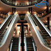 Safety Commercial Indoor Escalator for Homes