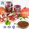 Beverage Fresh Jujube Pomegranate Fruit Juice Powder