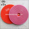Wd-2-100 Diamond Granite Polishing Pad in Abrasive