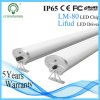 Aluminum Housing IP65 Tri-Proof LED Light with 5years Warranty