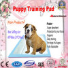 60*60 Super Absorbent Puppy Training Pads with Gel
