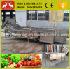 Stainless Steel Fruit Washing Machine