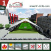 TFS Curve Tent Aluminum Structure for Sports Hangars
