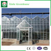 PC Sheet/Glass/Plastic Film Galvanized Pipe Green House for Strawberry/Rose