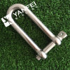 Stainless Steel AISI304/316 Long D Shackle