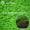 Simulation Turf Carpet for Garden or Landscape (SUNQ-AL00049)