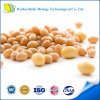 Ginseng Extract Capsule for Dietary Supplement