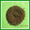 DAP Fertilizer 64% Diammonium Phosphate DAP