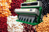 Vision CCD Beans Color Sorter, Beans Processing Machine Supplier