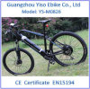 350W Pedal Assisted E-Bicycle for Europe Country
